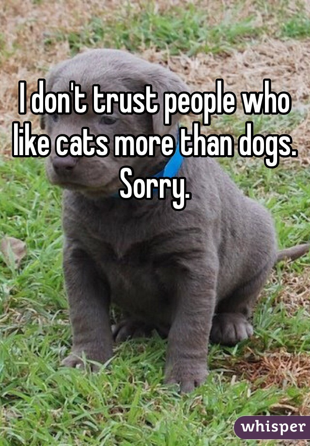 I don't trust people who like cats more than dogs. Sorry.