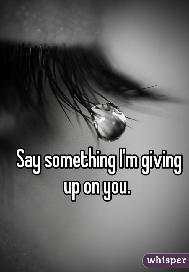 Say something I'm giving up on you.