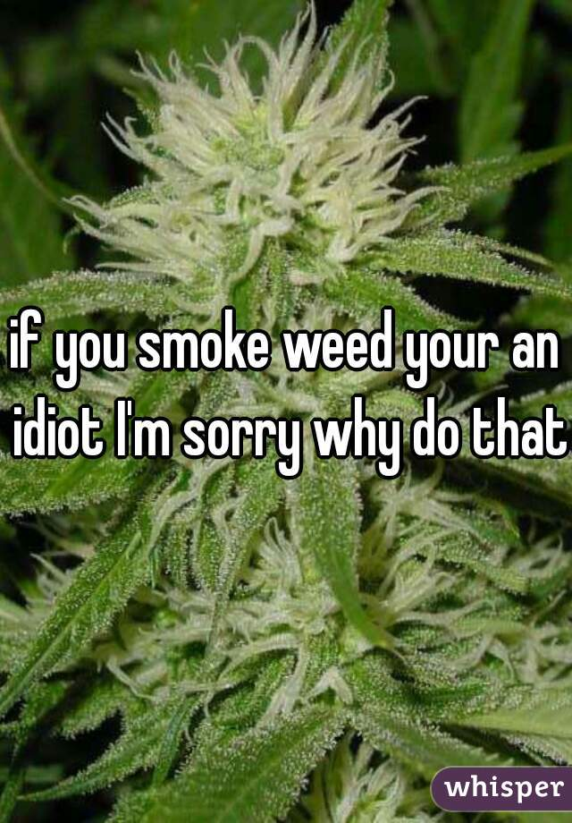 if you smoke weed your an idiot I'm sorry why do that