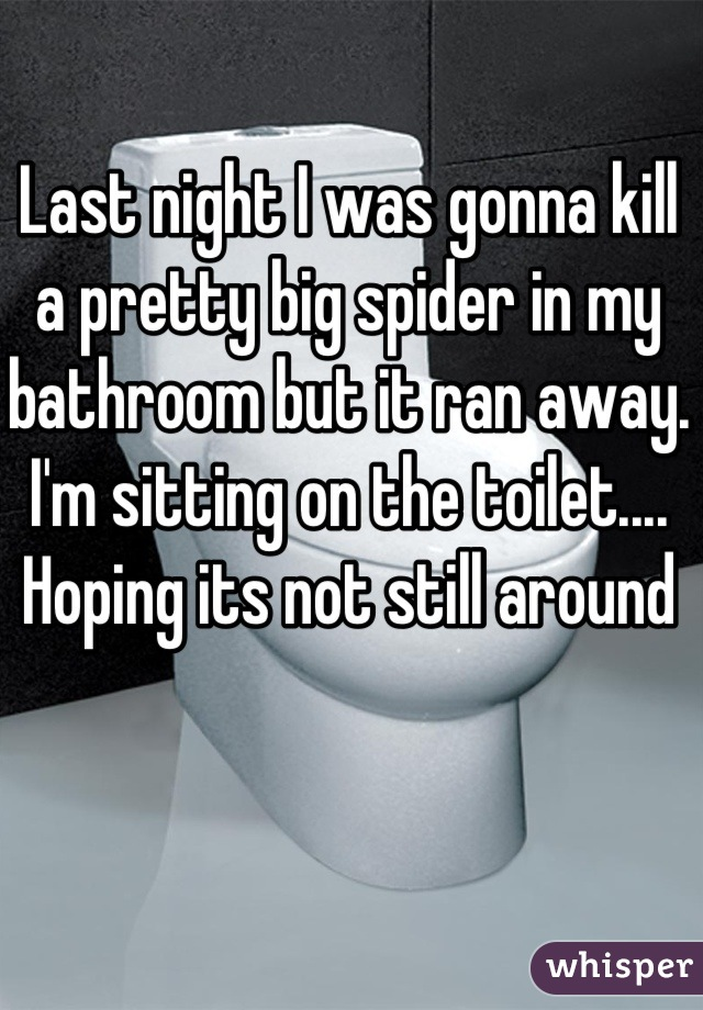 Last night I was gonna kill a pretty big spider in my bathroom but it ran away. I'm sitting on the toilet.... Hoping its not still around