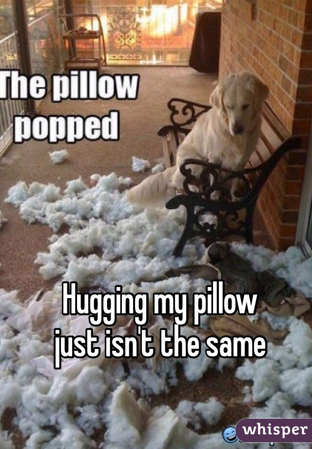 Hugging my pillow  just isn't the same