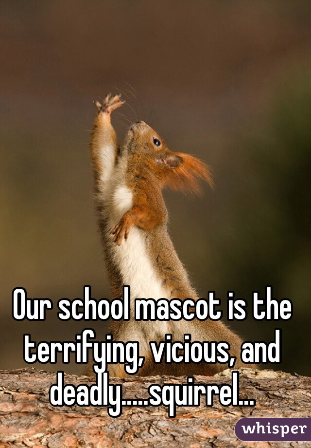 Our school mascot is the terrifying, vicious, and deadly.....squirrel...