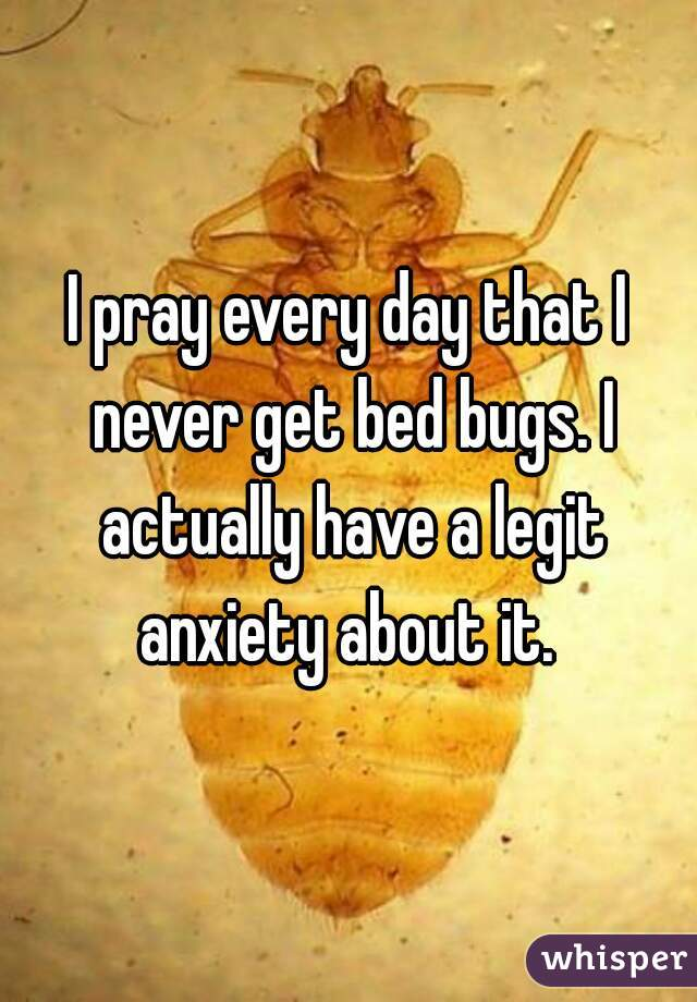 I pray every day that I never get bed bugs. I actually have a legit anxiety about it.