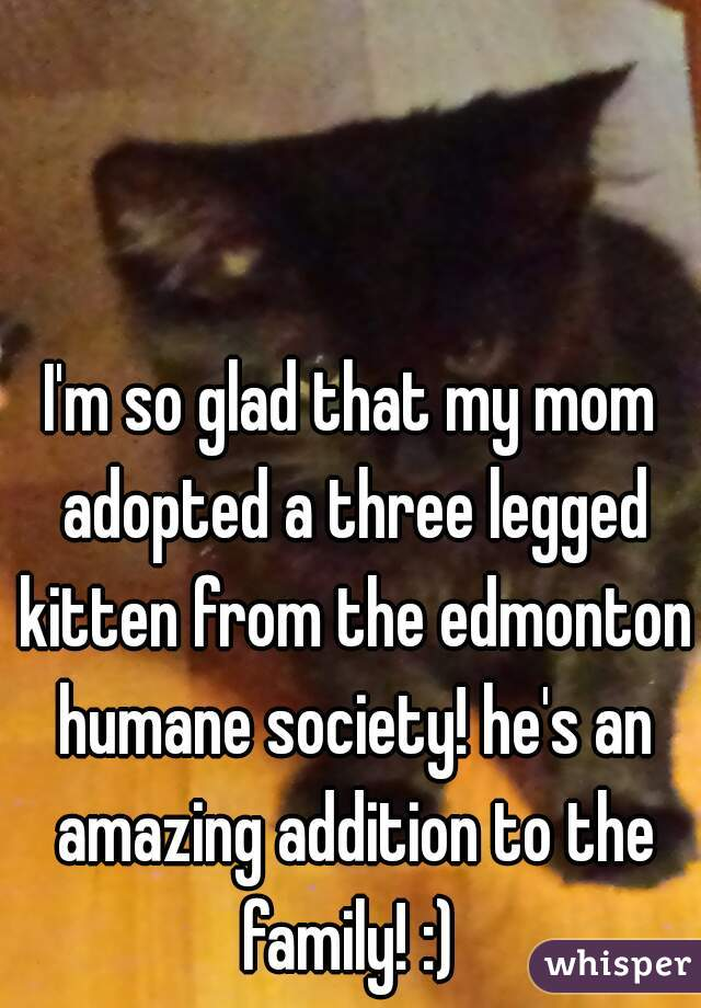 I'm so glad that my mom adopted a three legged kitten from the edmonton humane society! he's an amazing addition to the family! :)