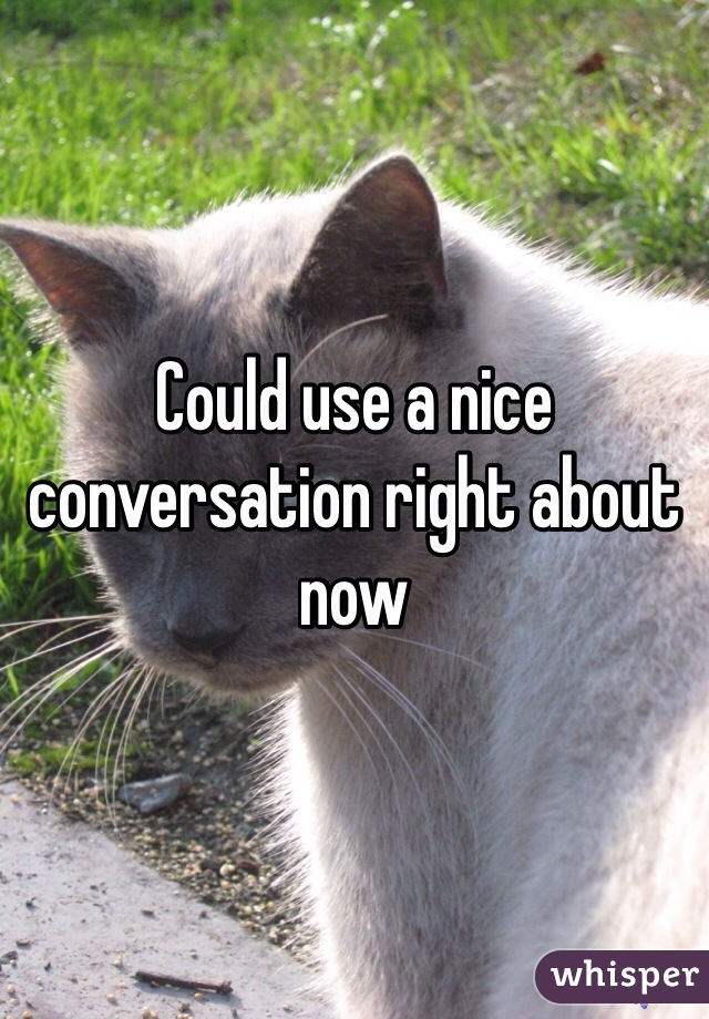 Could use a nice conversation right about now