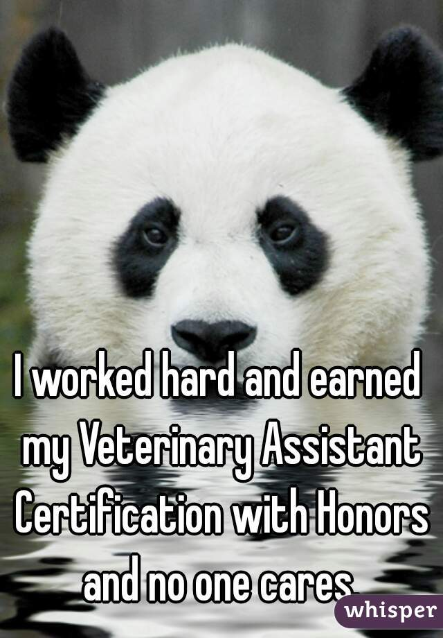 I worked hard and earned my Veterinary Assistant Certification with Honors and no one cares.
