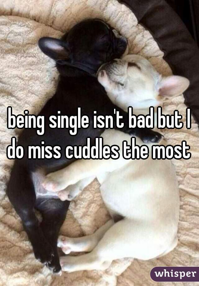 being single isn't bad but I do miss cuddles the most