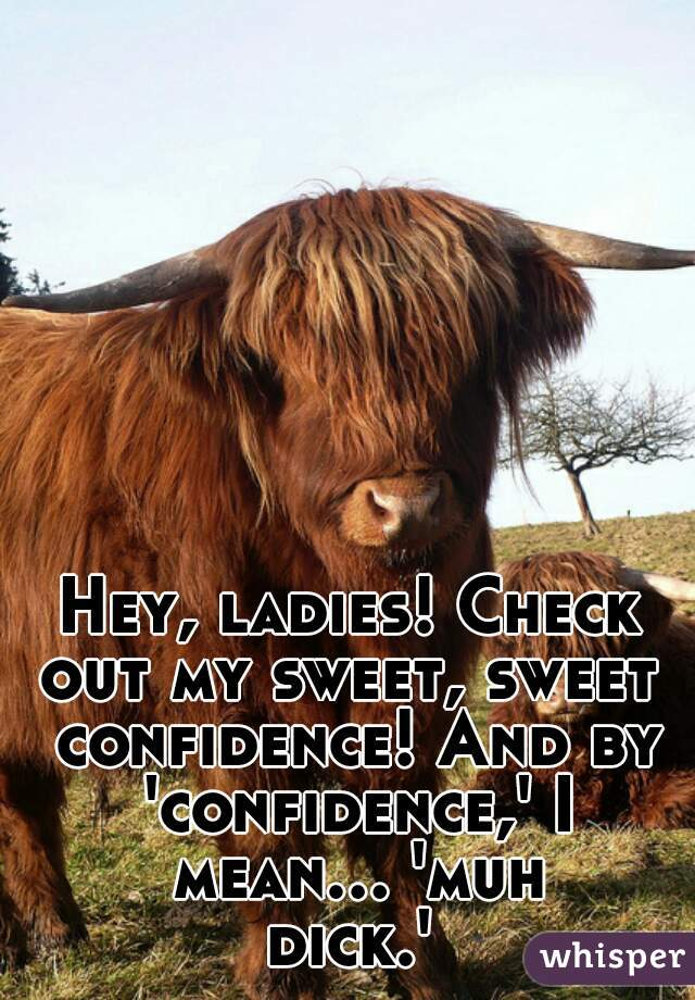 Hey, ladies! Check out my sweet, sweet  confidence! And by 'confidence,' I mean... 'muh dick.'