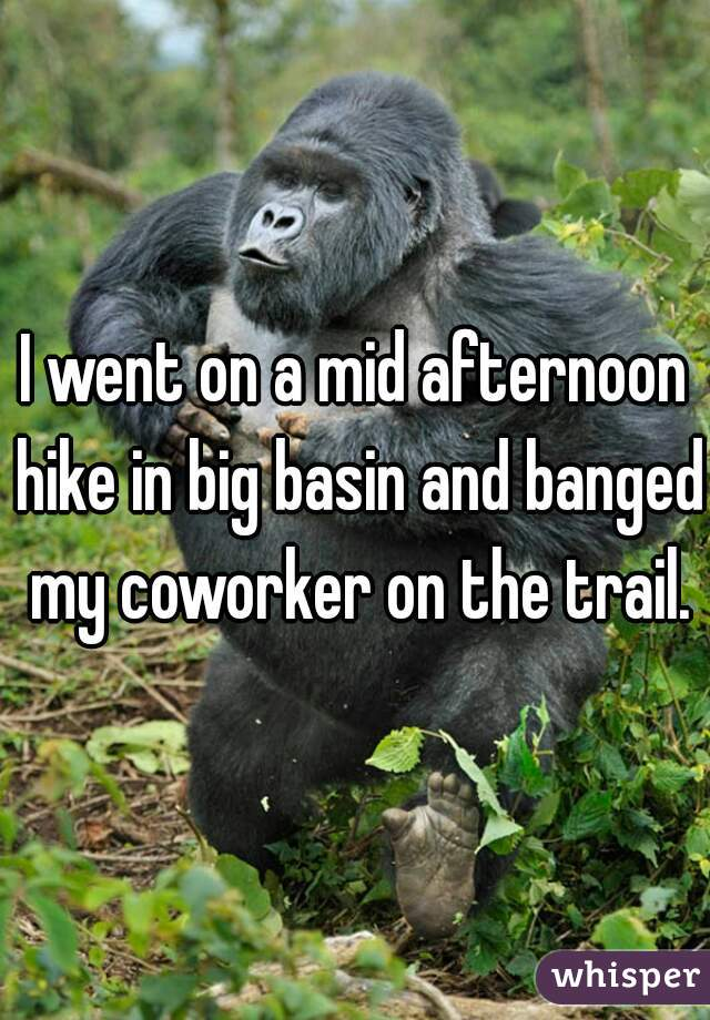 I went on a mid afternoon hike in big basin and banged my coworker on the trail.