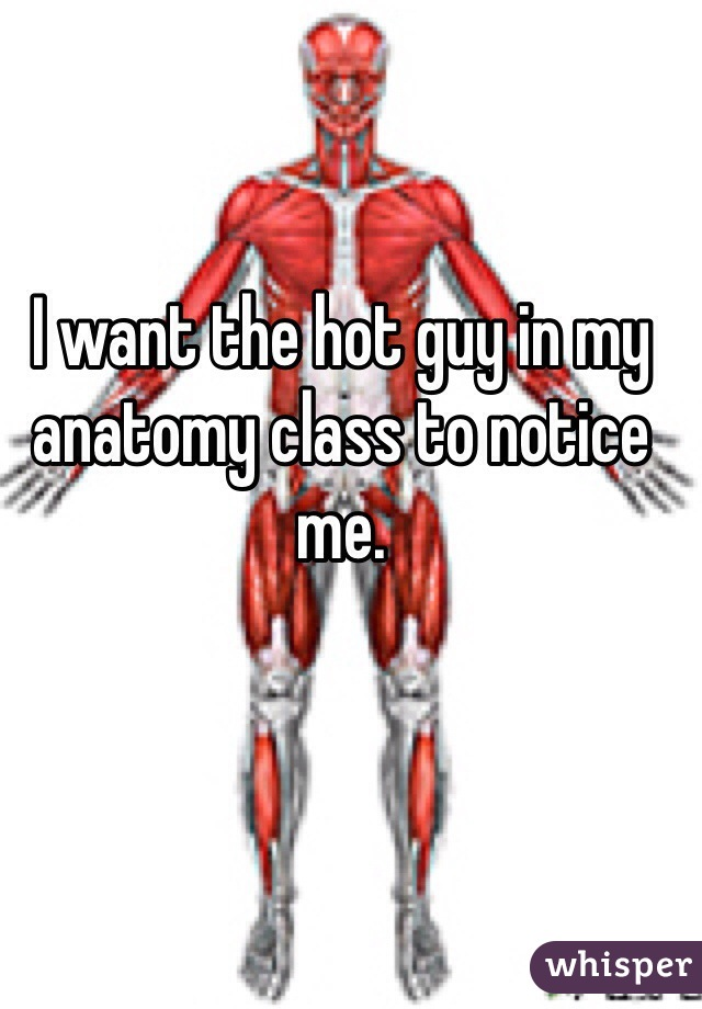 I want the hot guy in my anatomy class to notice me.