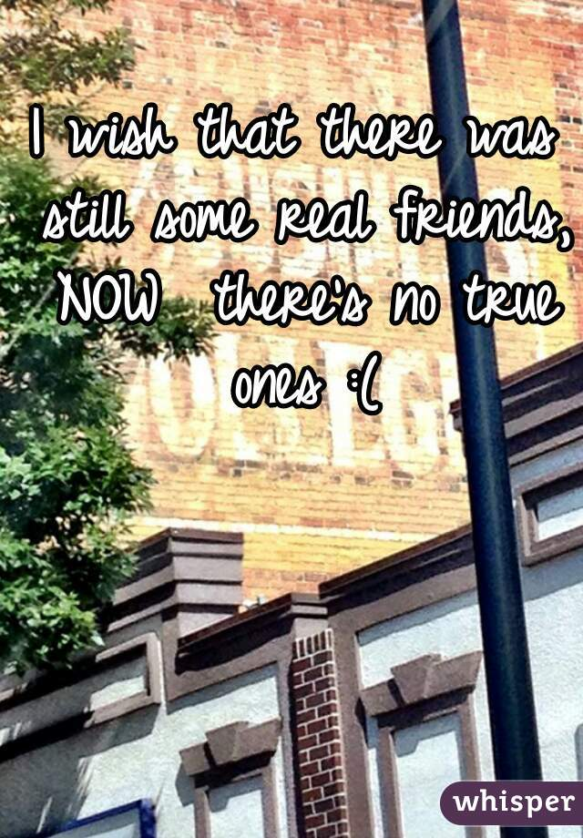 I wish that there was still some real friends, NOW  there's no true ones :(
