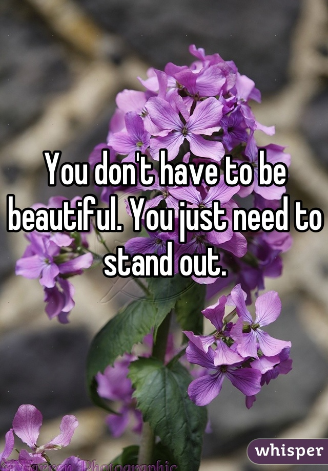 You don't have to be beautiful. You just need to stand out.