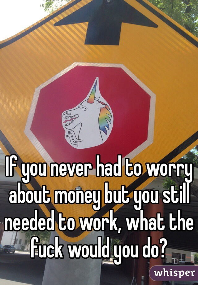 If you never had to worry about money but you still needed to work, what the fuck would you do?