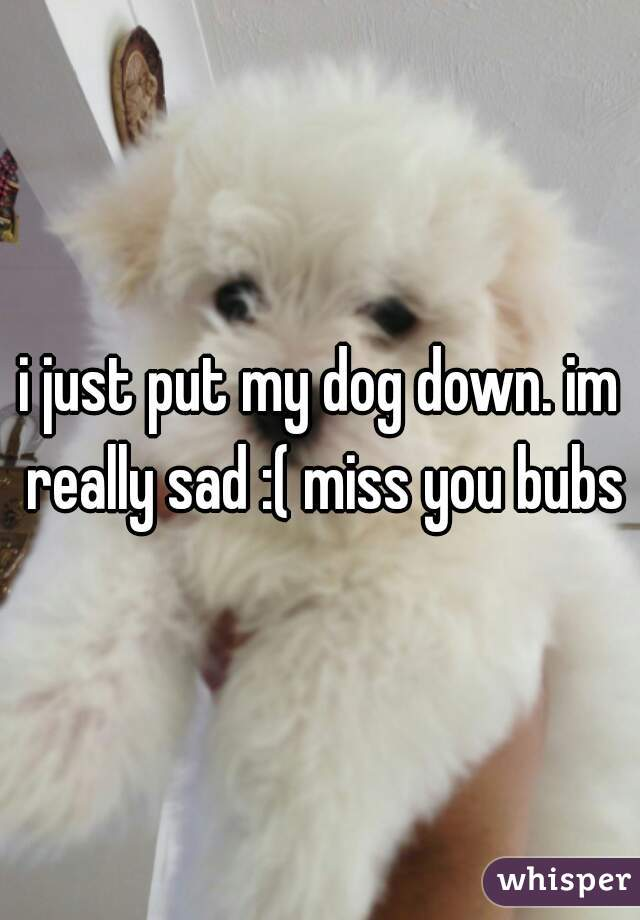 i just put my dog down. im really sad :( miss you bubs