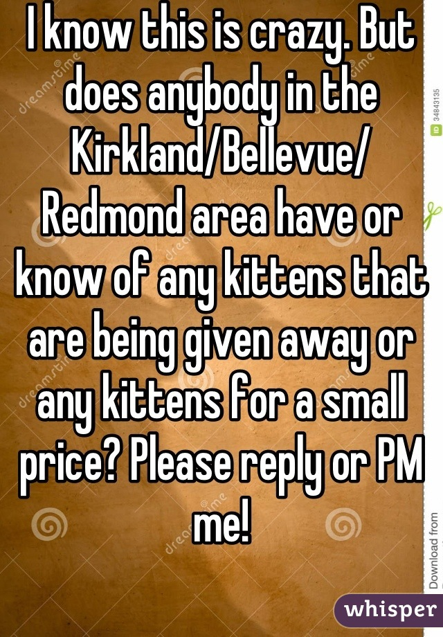 I know this is crazy. But does anybody in the Kirkland/Bellevue/ Redmond area have or know of any kittens that are being given away or any kittens for a small price? Please reply or PM me!