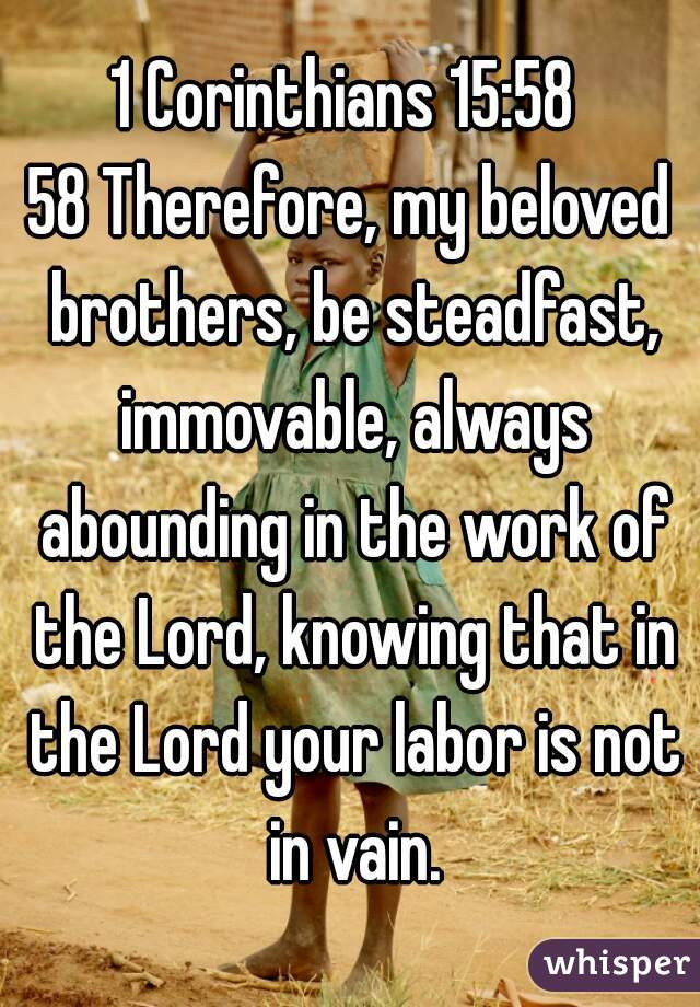 1 Corinthians 15:58   58 Therefore, my beloved brothers, be steadfast, immovable, always abounding in the work of the Lord, knowing that in the Lord your labor is not in vain.