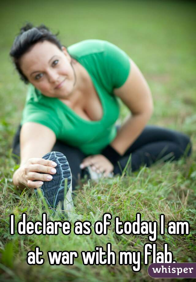 I declare as of today I am at war with my flab.