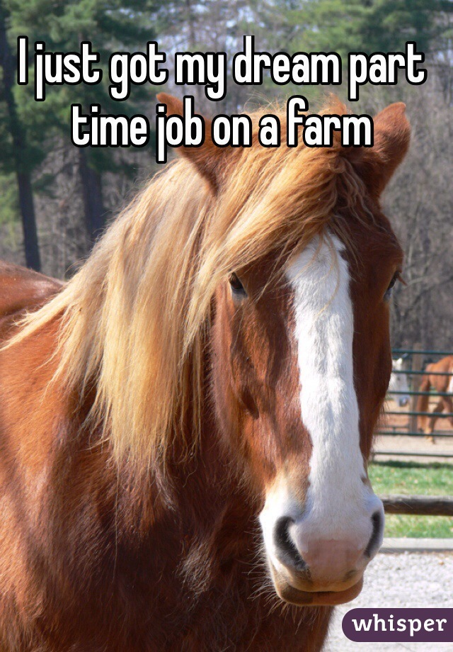 I just got my dream part time job on a farm