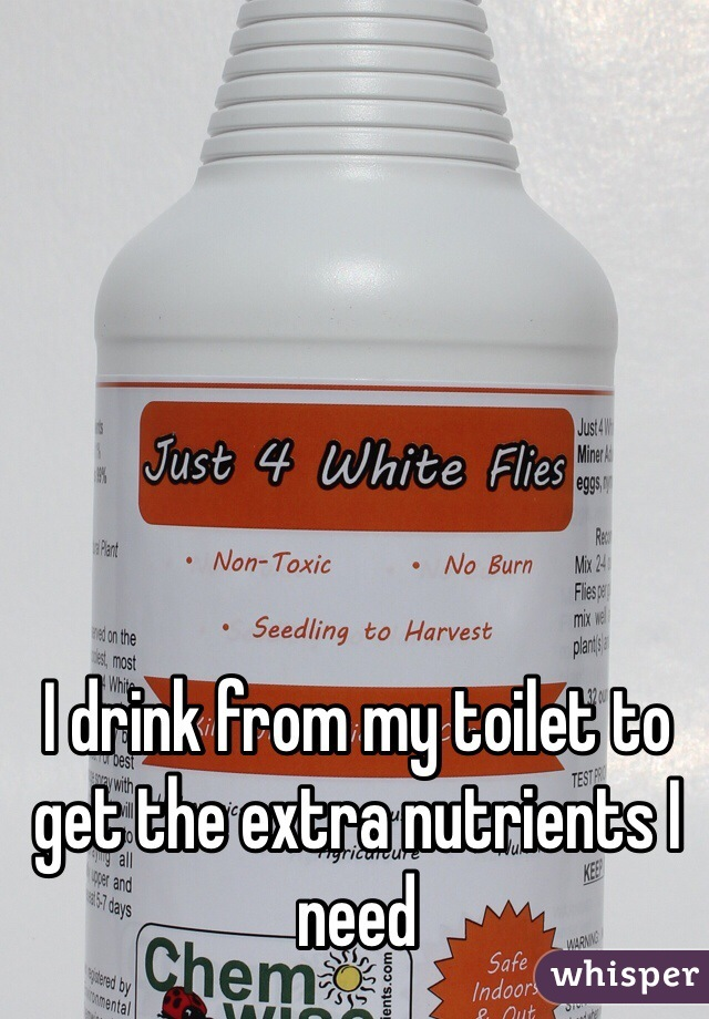 I drink from my toilet to get the extra nutrients I need