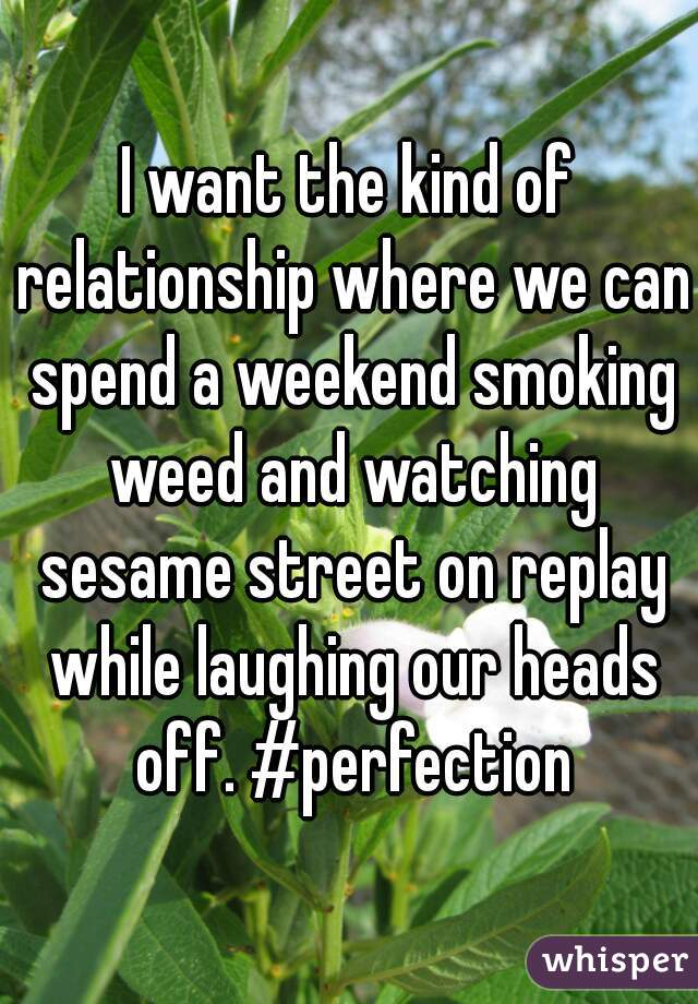 I want the kind of relationship where we can spend a weekend smoking weed and watching sesame street on replay while laughing our heads off. #perfection