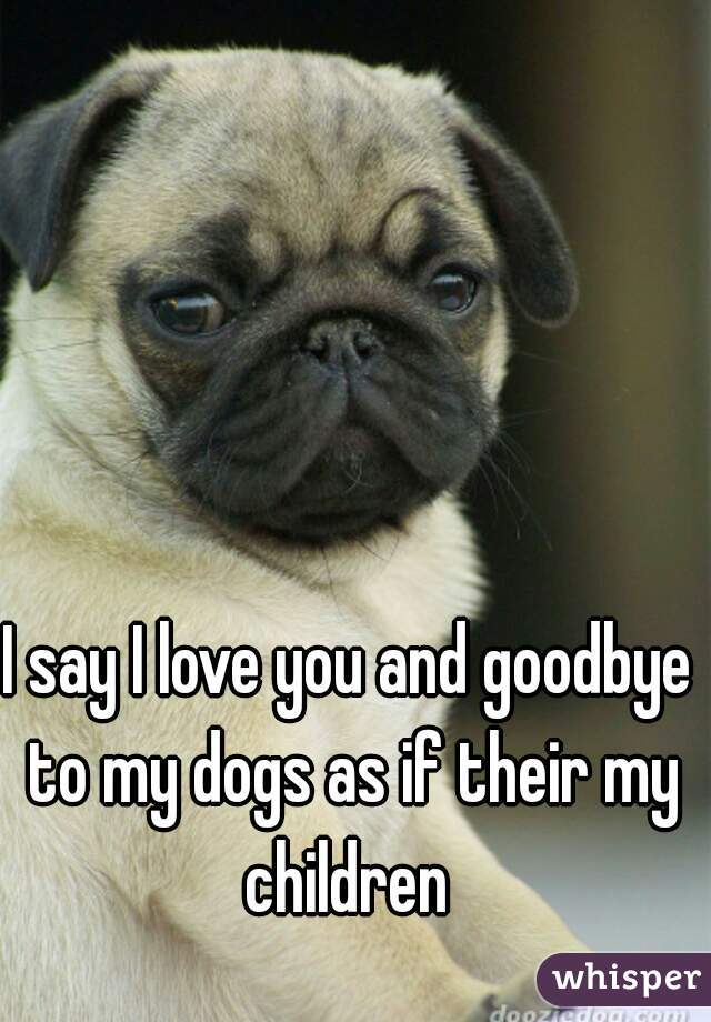 I say I love you and goodbye to my dogs as if their my children
