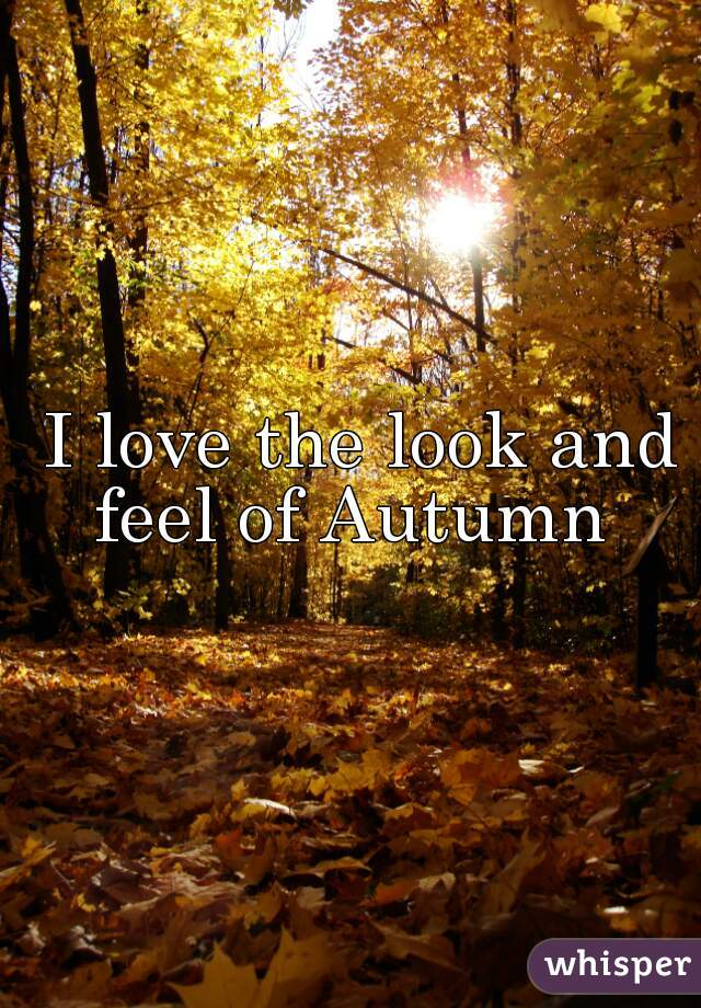 I love the look and feel of Autumn