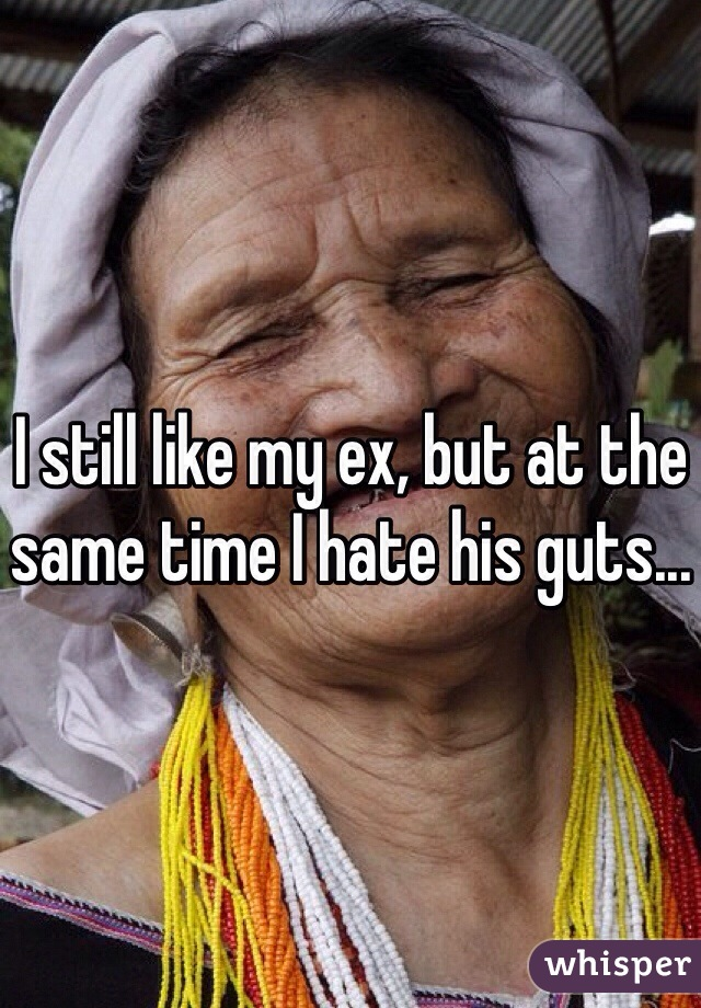 I still like my ex, but at the same time I hate his guts...