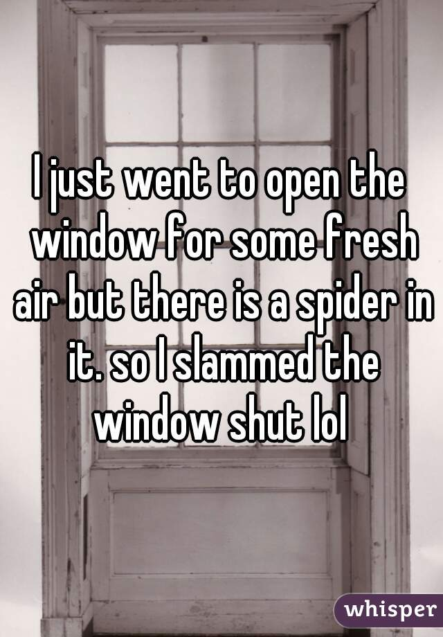 I just went to open the window for some fresh air but there is a spider in it. so I slammed the window shut lol