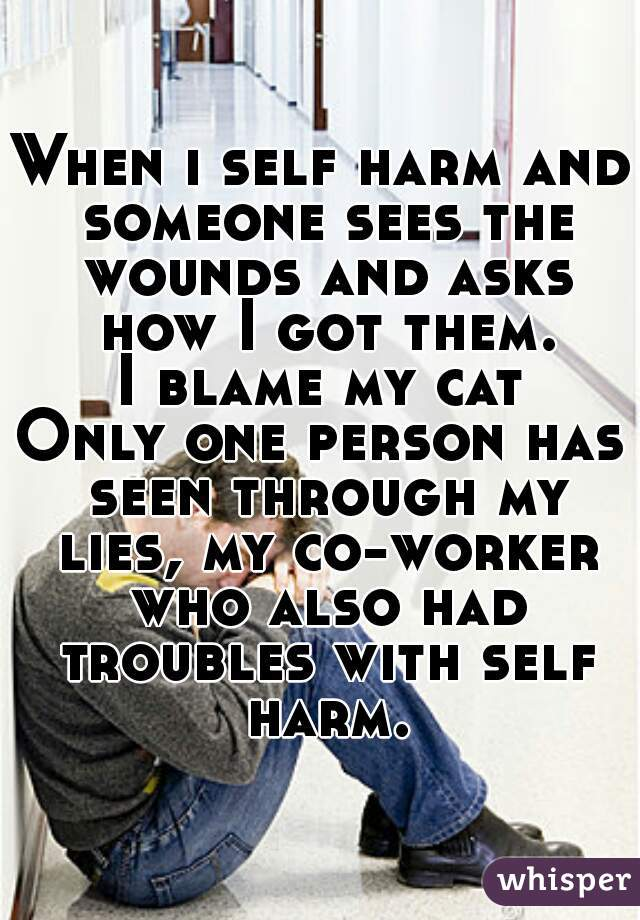 When i self harm and someone sees the wounds and asks how I got them. I blame my cat Only one person has seen through my lies, my co-worker who also had troubles with self harm.