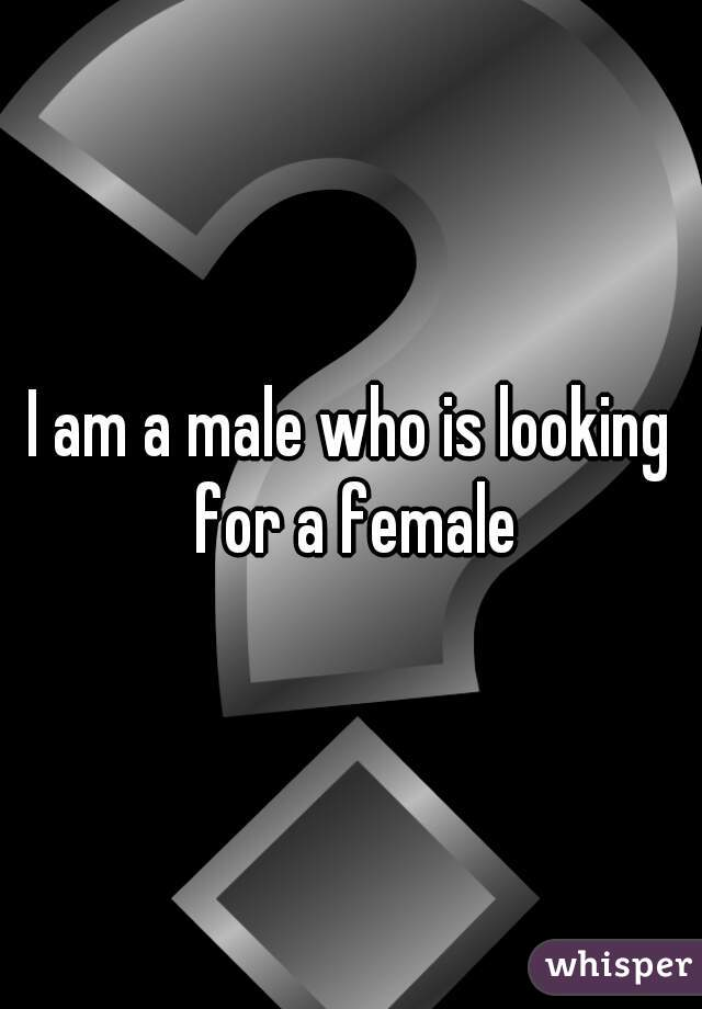 I am a male who is looking for a female