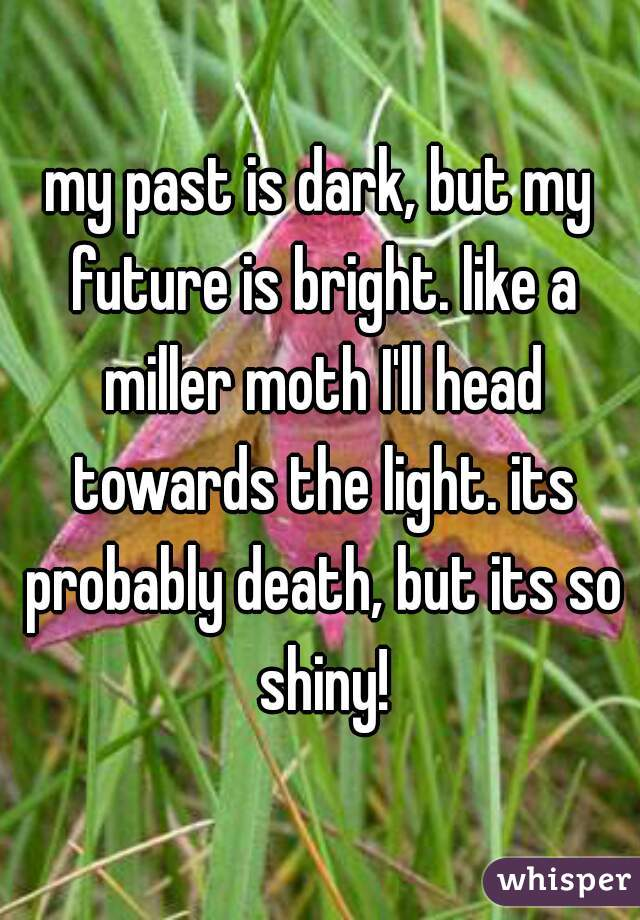 my past is dark, but my future is bright. like a miller moth I'll head towards the light. its probably death, but its so shiny!