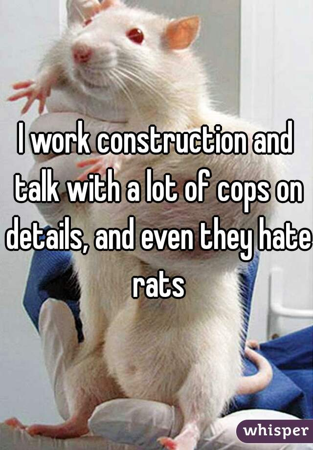 I work construction and talk with a lot of cops on details, and even they hate rats