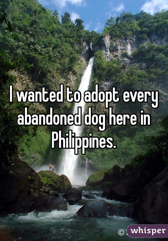 I wanted to adopt every abandoned dog here in Philippines.