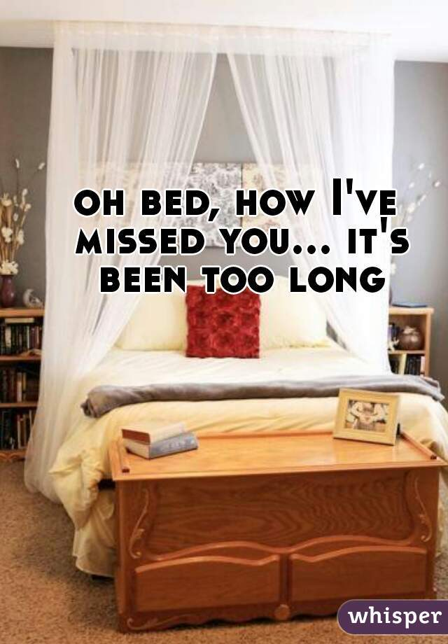 oh bed, how I've missed you... it's been too long