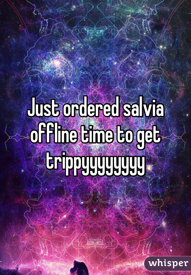 Just ordered salvia offline time to get trippyyyyyyyy