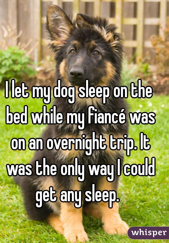I let my dog sleep on the bed while my fiancé was on an overnight trip. It was the only way I could get any sleep.