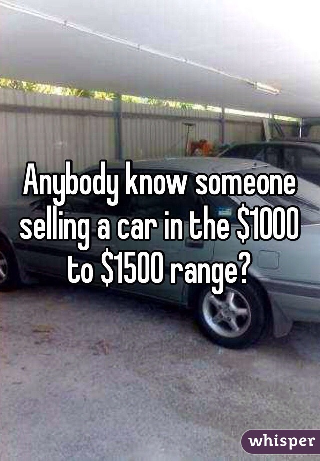 Anybody know someone selling a car in the $1000 to $1500 range?