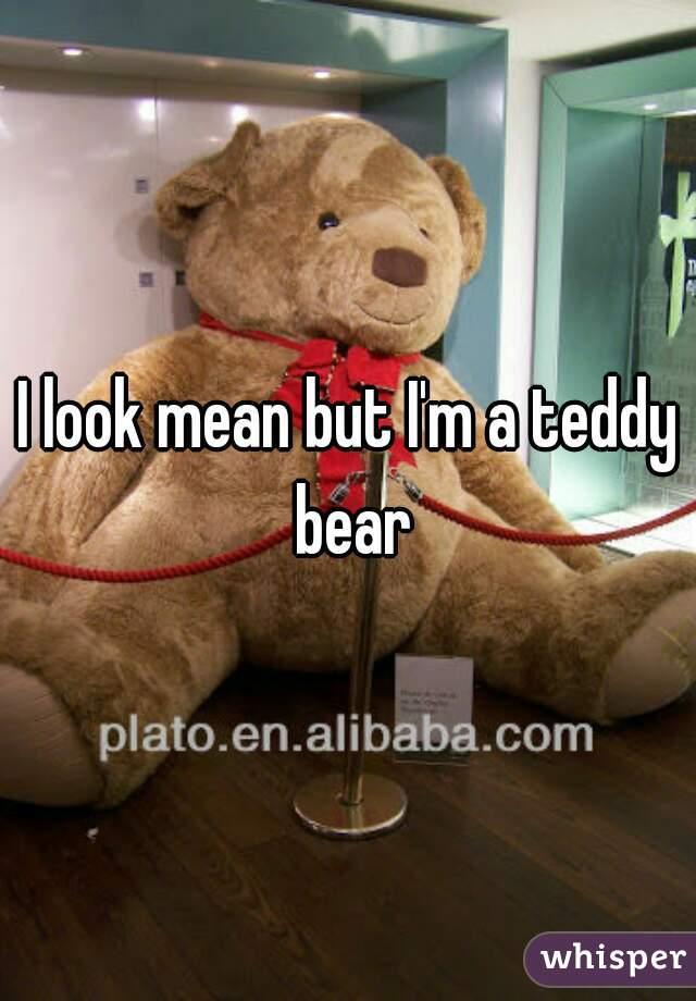 I look mean but I'm a teddy bear