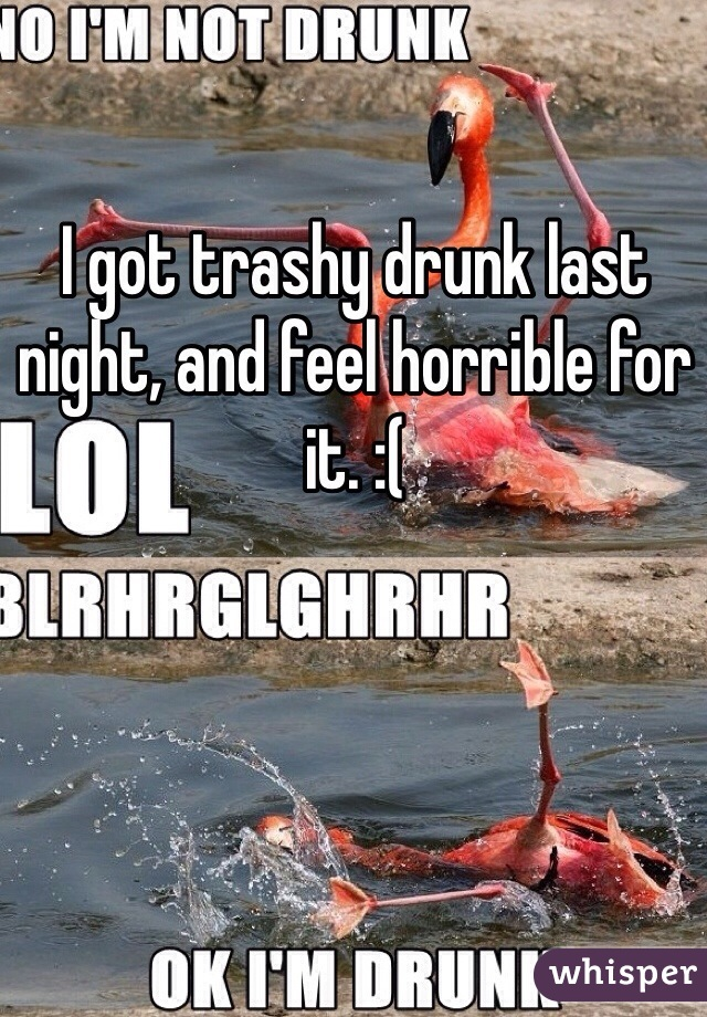 I got trashy drunk last night, and feel horrible for it. :(