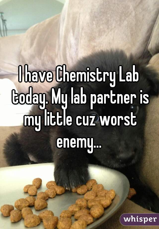 I have Chemistry Lab today. My lab partner is my little cuz worst enemy...