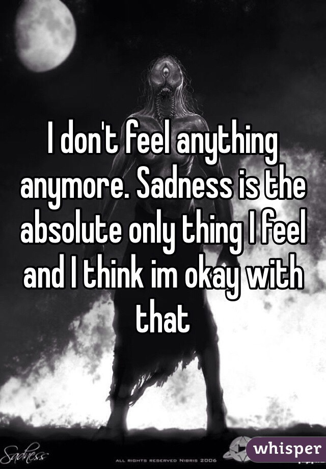 I don't feel anything anymore. Sadness is the absolute only thing I feel and I think im okay with that