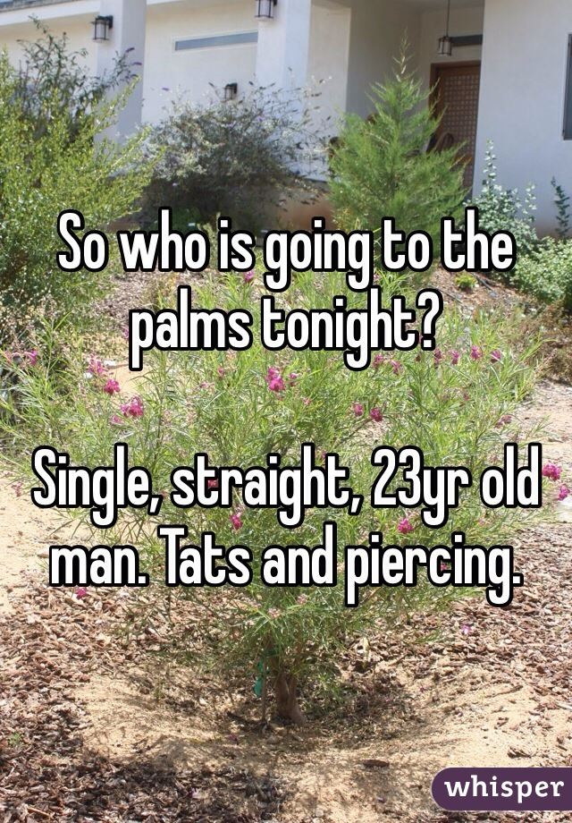 So who is going to the palms tonight?   Single, straight, 23yr old man. Tats and piercing.