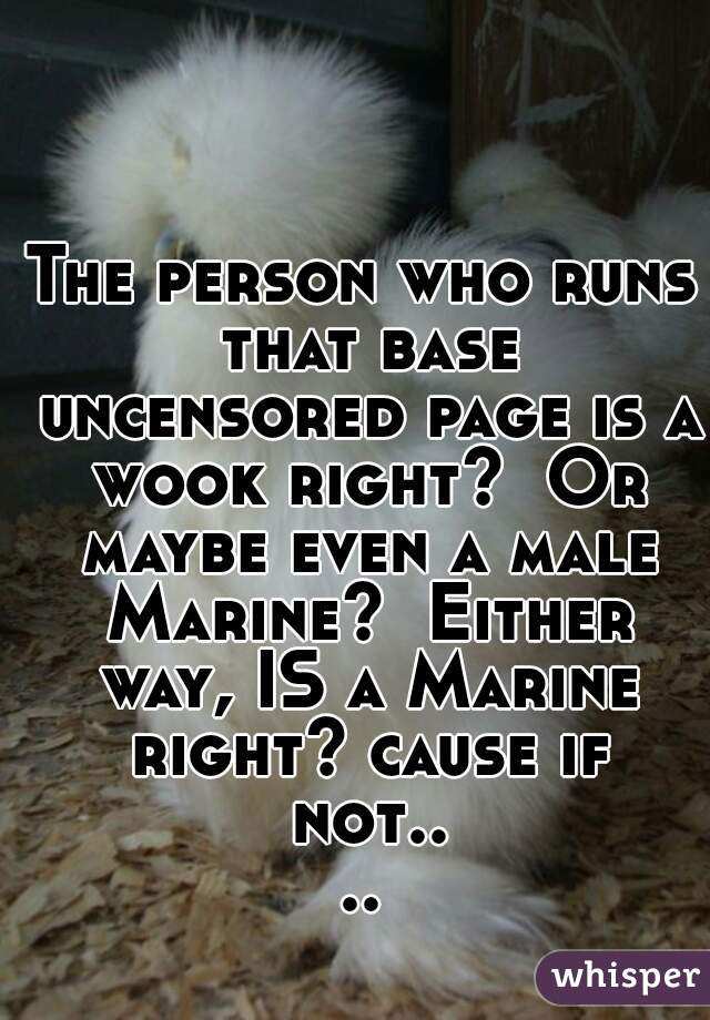 The person who runs that base uncensored page is a wook right?  Or maybe even a male Marine?  Either way, IS a Marine right? cause if not....