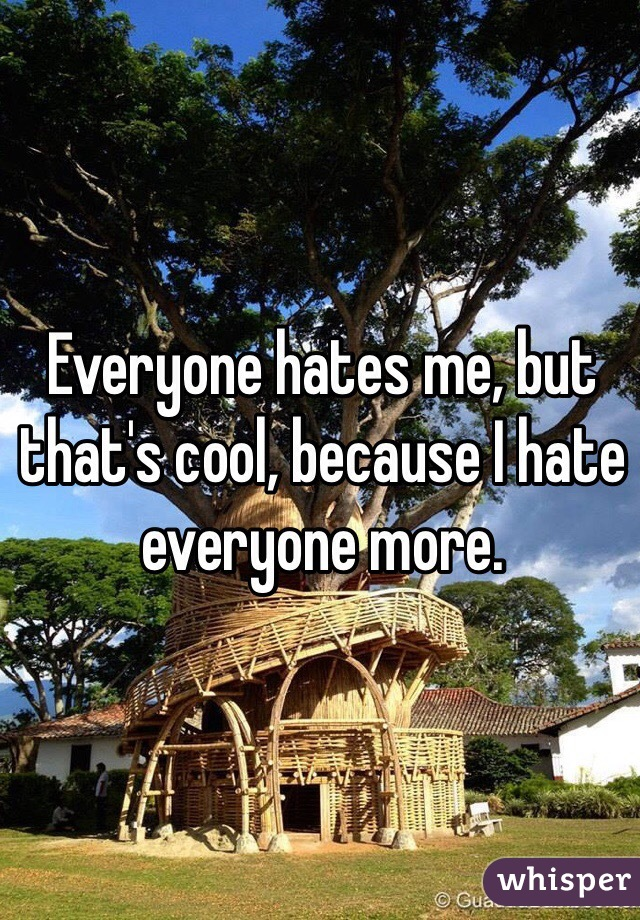 Everyone hates me, but that's cool, because I hate everyone more.