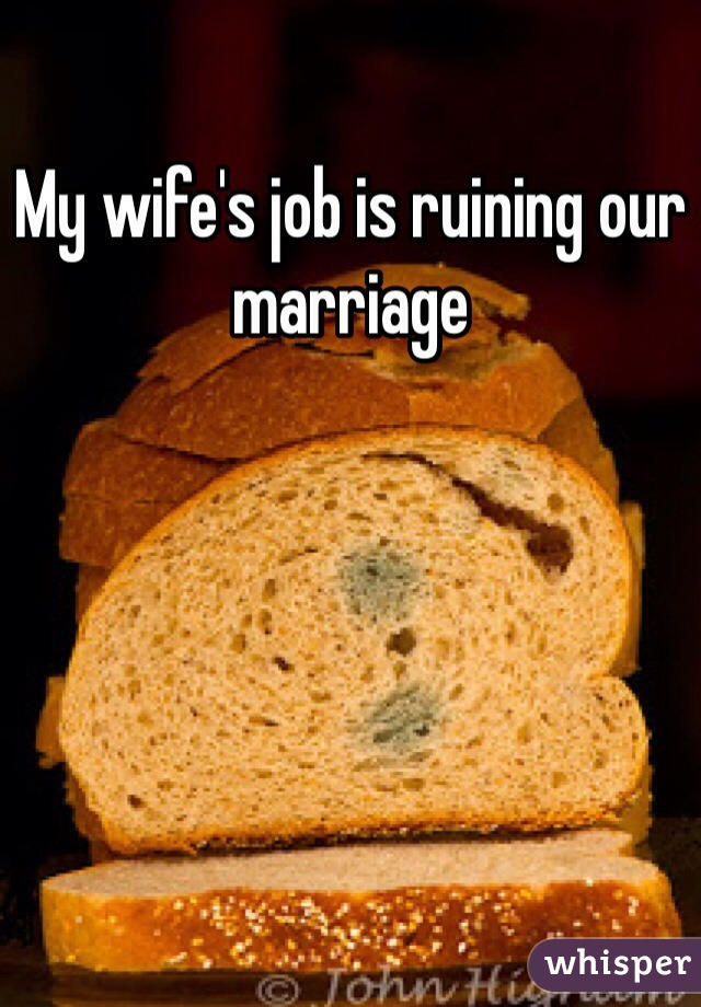 My wife's job is ruining our marriage