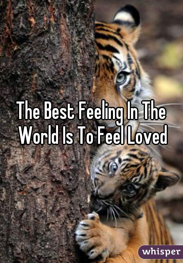 The Best Feeling In The World Is To Feel Loved
