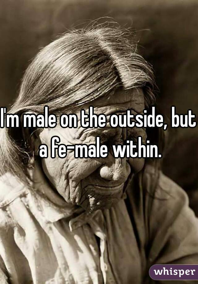 I'm male on the outside, but a fe-male within.