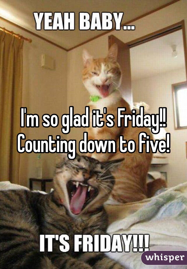 I'm so glad it's Friday!! Counting down to five!