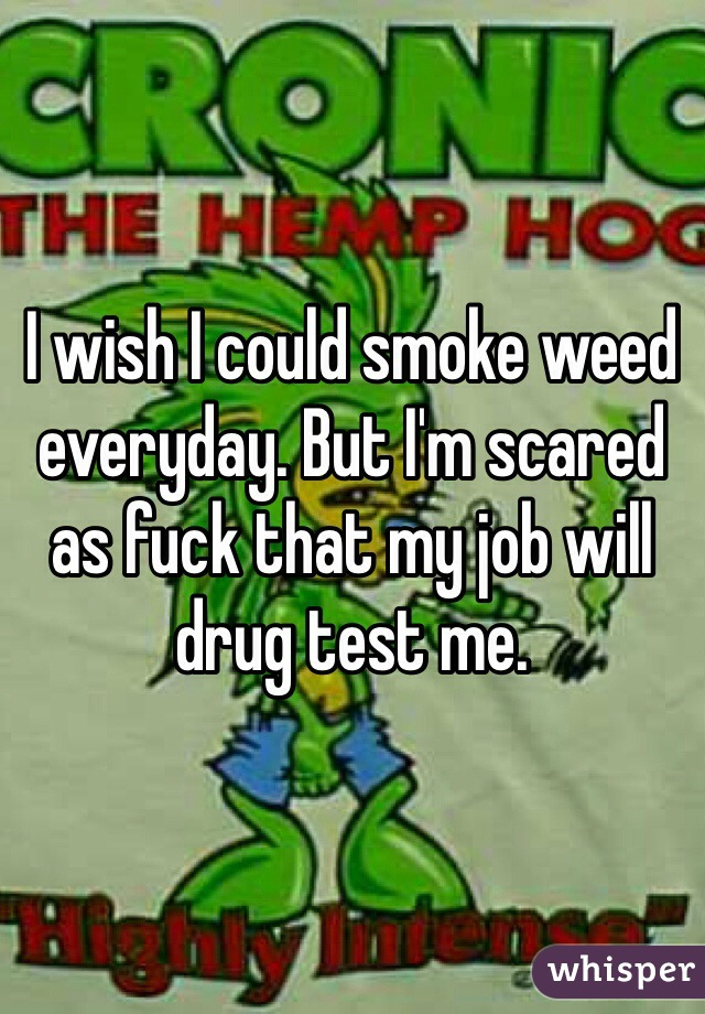 I wish I could smoke weed everyday. But I'm scared as fuck that my job will drug test me.