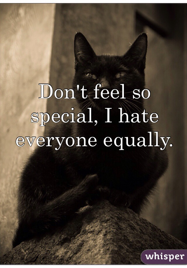 Don't feel so special, I hate everyone equally.